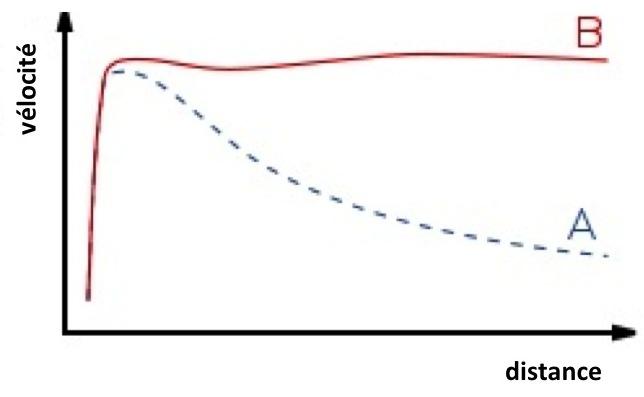 courbes-vélocité