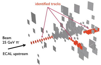 Particle tracks identified within a hadronic shower in the CALICE hadron calorimeter: The right stuff for calibration!