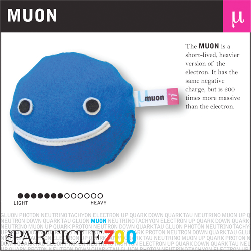A muon is a short-lived, heavier version of the electron with the same negative charge but 200 times more massive, and its decay rates when travelling close to the speed of light are evidence for relativity