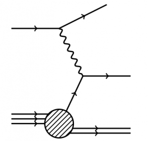 The feynman diagram for Deep Inelastic Scattering (electron line at the top, proton on the bottom). This type of scattering is sensitive to quark spin.