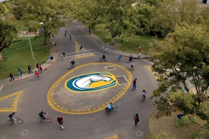 One of many bike circles on campus.