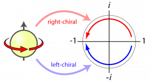 Effect of a 360 degree rotation on a left-chiral versus right-chiral fermion. Both particles pick up a minus sign, but the left-chiral fermion goes one way around the complex plane, while the right-chiral fermion goes the other way.