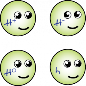 The Four Higgses of the Standard Model