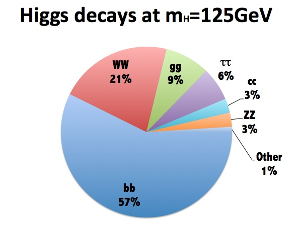 Branching fractions of the Higgs boson at 125GeV