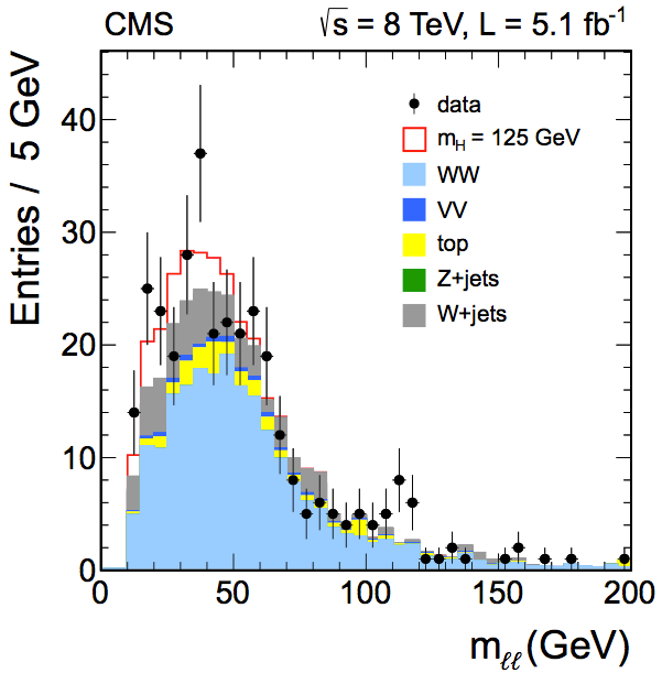 The invariant mass for CMS's H→WW* search (CMS)