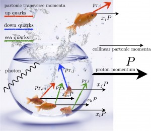 Partons (quarks and gluons) are like fishes confined inside a fishbowl (the proton). Each parton has its own collinear and transverse velocity, indicated by black and colored arrows respectively. Different colors indicate different flavors for quarks.