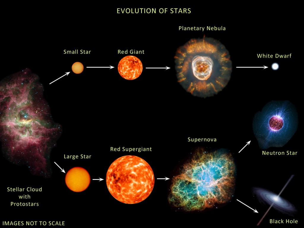 The evolution of stars, showing how a sufficiently large star can end its life as a black hole