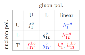 In this table the eight available TMD (transverse-momentum-dependent) distributions shaping the physics of (un)polarized gluons inside (un)polarized protons are listed. At the LHC we can access the first row only, at AFTER more combinations will be investigated.