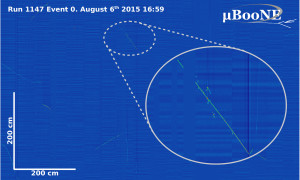 This image shows the first cosmic ray event recorded in the MicroBooNE TPC on Aug. 6. Image: MicroBooNE